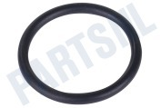 54917, C00054917 Afdichtingsrubber O-ring pomp - container