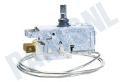 Crystal 484000008686 Koelkast Thermostaat A13 0447R D415 ART465R,ARL760G,