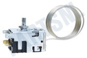 Electrolux loisirs 292652810  Thermostaat Electrisch RM4203, RGE200