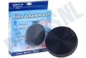 F196 Filter Koolstoffilter 196x32mm